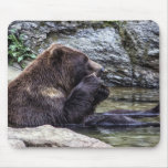 Beautiful Brown Grizzly Bear Mouse Pad