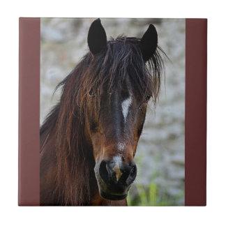 Beautiful Brown Horse Ceramic Tile