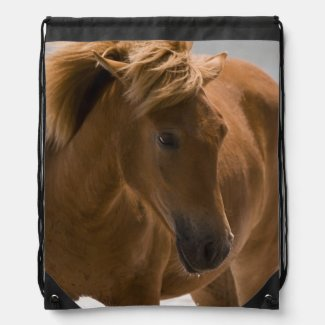 Beautiful Brown Horse Drawstring Backpack