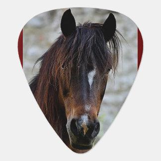 Beautiful Brown Horse Guitar Pick