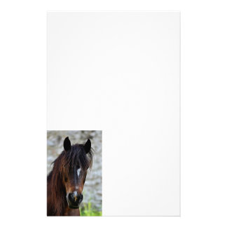 Beautiful Brown Horse Stationery