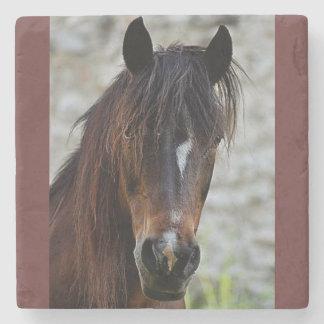 Beautiful Brown Horse Stone Coaster