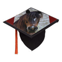 Beautiful Brown Horse Tassel Topper