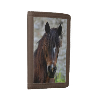 Beautiful Brown Horse Trifold Wallets