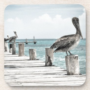 Beach Themed Beautiful Brown Pelicans and Blue Water Coaster