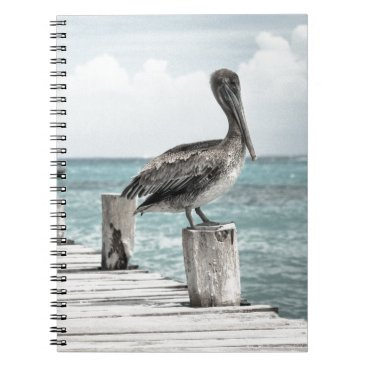 Beach Themed Beautiful Brown Pelicans and Blue Water Notebook