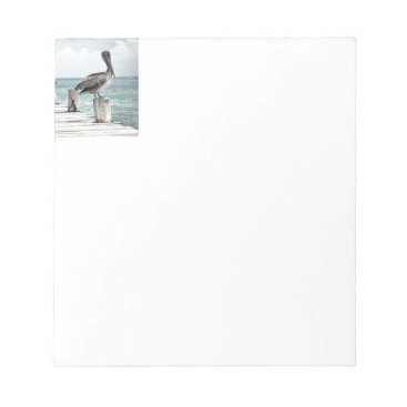 Beach Themed Beautiful Brown Pelicans and Blue Water Notepad
