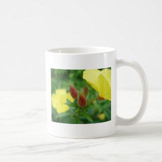 Beautiful Budding Flower Classic White Coffee Mug