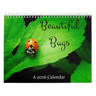 Beautiful Bugs 2016 Calendar