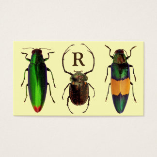 Beautiful Bugs | Insects | Monogram | Entomologist Business Card