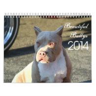 Beautiful Bullys 2014 Dog Calendar