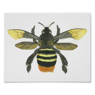 Beautiful Bumble Bee Watercolor Painting Print