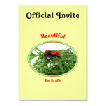 "Beautiful But Deadly Cow Killer Wasp 5"" X 7"" Invitation Card"