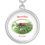 Beautiful But Deadly Cow Killer Wasp Necklace