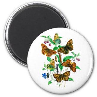 Beautiful Butterflies 2 Inch Round Magnet