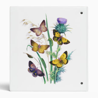 Beautiful Butterflies Amid Thistle 3 Ring Binder