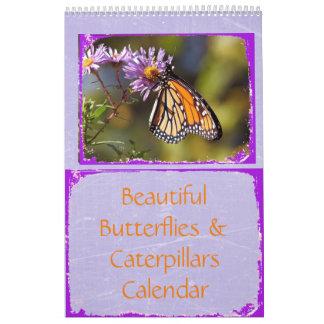 Beautiful Butterflies and Caterpillars Calendar