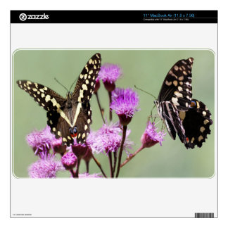 """Beautiful Butterflies and lilac flowers Decal For 11"""" MacBook Air"""