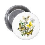 Beautiful Butterflies Buttons