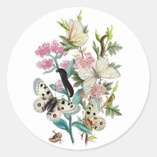 Beautiful Butterflies Classic Round Sticker