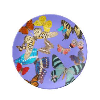 Beautiful Butterflies on Lavender Plate