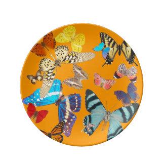 Beautiful Butterflies on Orange Plate