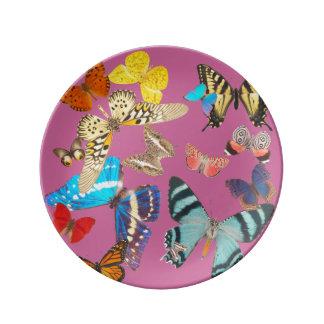 Beautiful Butterflies on Pink Plate