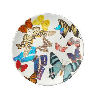 Beautiful Butterflies on Yellow Porcelain Plate