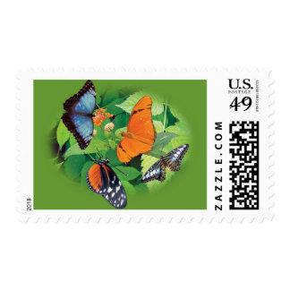 Beautiful Butterflies Stamp