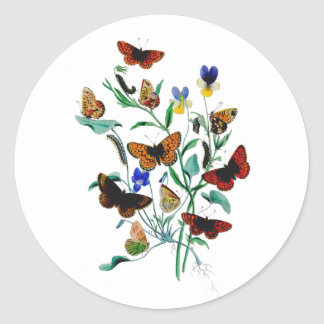 Beautiful Butterflies Stickers