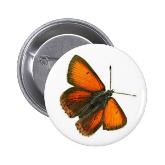 Beautiful Butterfly 2 Inch Round Button
