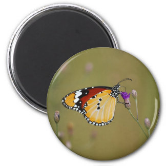 Beautiful butterfly and lifes nectar 2 inch round magnet