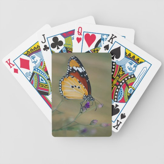 Beautiful butterfly and lifes nectar bicycle playing cards