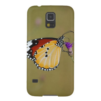 Beautiful butterfly and lifes nectar samsung galaxy nexus case