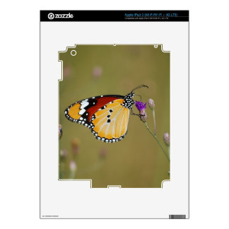 Beautiful butterfly and lifes nectar decals for iPad 3