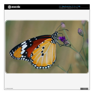 Beautiful butterfly and lifes nectar MacBook air decal