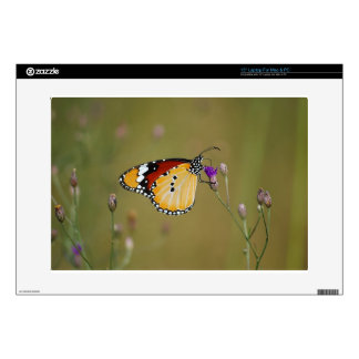 Beautiful butterfly and lifes nectar decals for laptops
