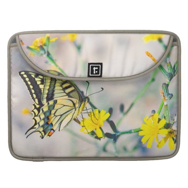 Beautiful Butterfly and Small Yellow Flowers