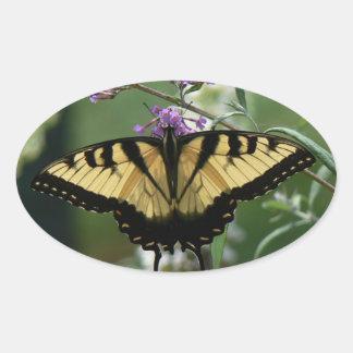 Beautiful Butterfly Glossy Oval Sticker
