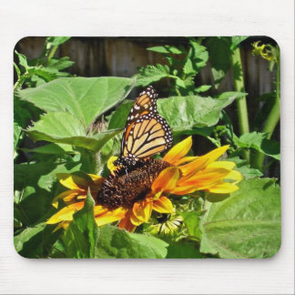 Beautiful Butterfly on Bright Sunflower Photo Mouse Pad