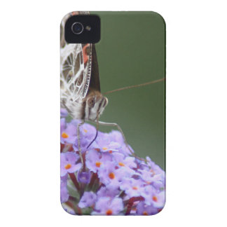 Beautiful Butterfly on butterfly bush iPhone 4 Cases