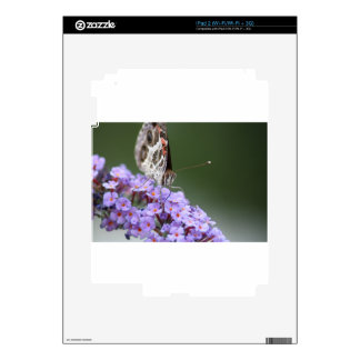 Beautiful Butterfly on butterfly bush Skin For The iPad 2