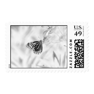 Beautiful Butterfly on flower - Black and White Postage
