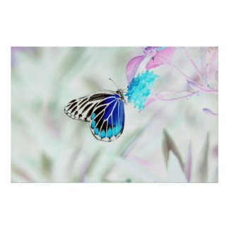 Beautiful Butterfly on flower - Negative Photo Poster