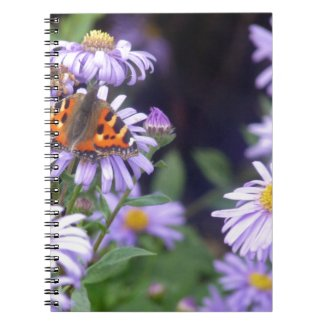 Beautiful Butterfly On Flowers Notebook