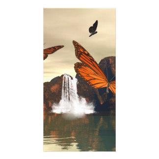 Beautiful butterfly photo card