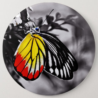 Beautiful Butterfly Pinback Button