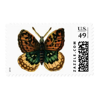 Beautiful Butterfly Postage