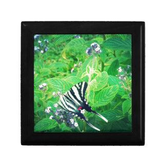 Beautiful Butterfly Shenandoah Valley Jewelry Box