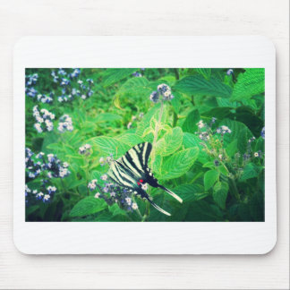 Beautiful Butterfly Shenandoah Valley Mouse Pad